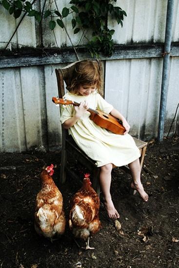 música-para-animais