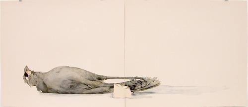 ilustração | john pusareti