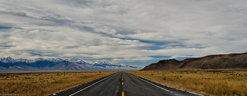 estrada-adiante