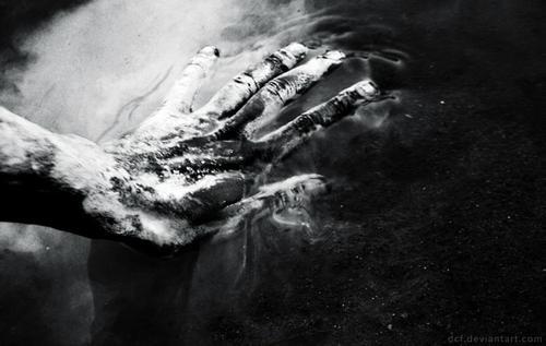 foto | david chance fragale